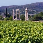 Half day Nemea wine tour in Greece